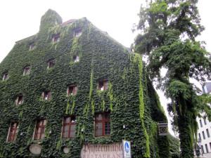 Imagen de Oropesa en Munich viendo un jardin vertical enorme